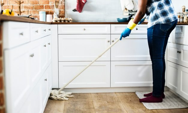 Are Your Household Cleaning Products Increasing Your Family's Obesity Risk?